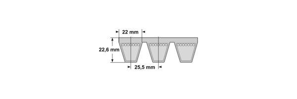 ConCar Kraftbänder - Profil SPC